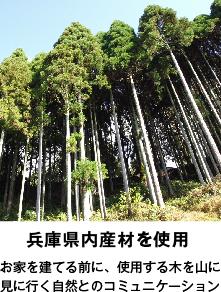 兵庫県内産材を使用 お家を建てる前に、使用する木を山に見に行く自然とのコミュニケーション